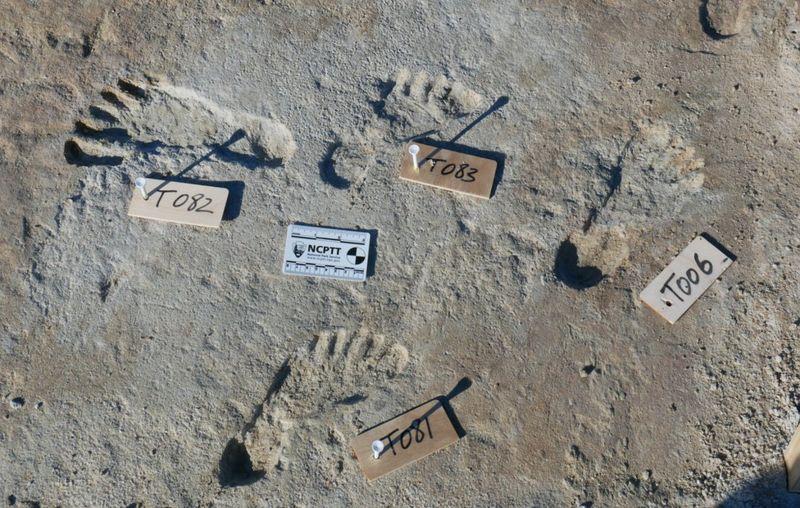 Amerika'daki ilk insanların tarihiyle ilgili kanıtlar bulundu-2-gazete-yenigun - Kopya
