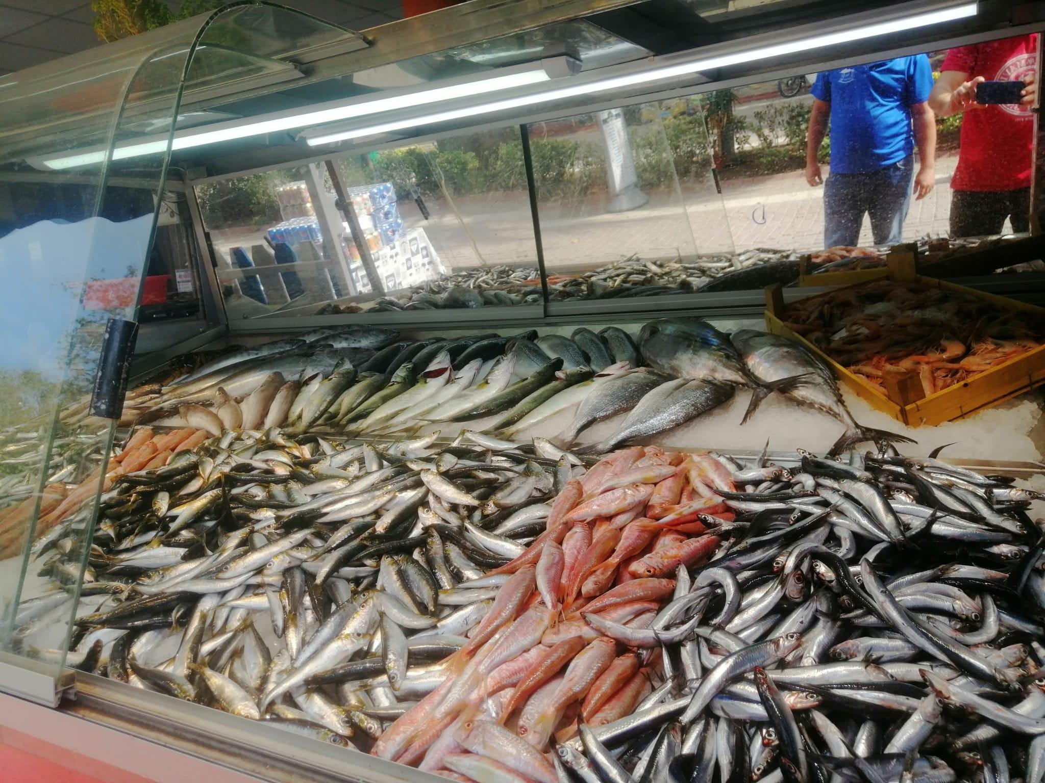 Erdek'te balık tezgahları şenlendi-1-gazete-yenigun-1