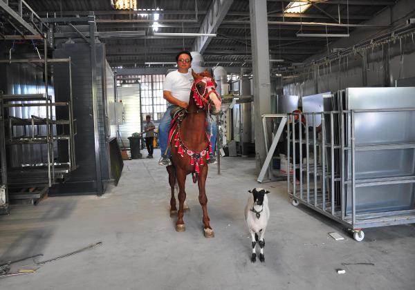 At ve kuzusuyla ilgilendi, psikolojik sorunlarından kurtuldu-yenigun