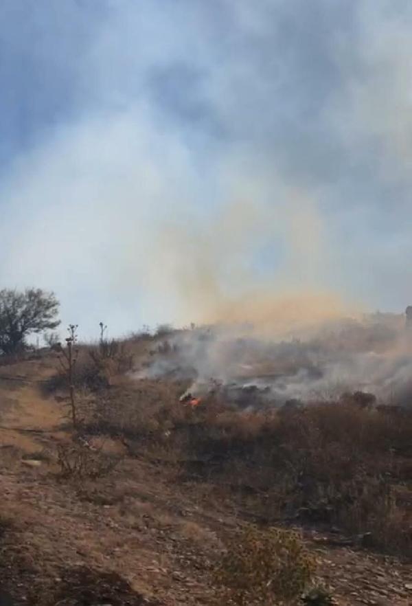 İzmir'de otluktaki yangın ormana sıçradı