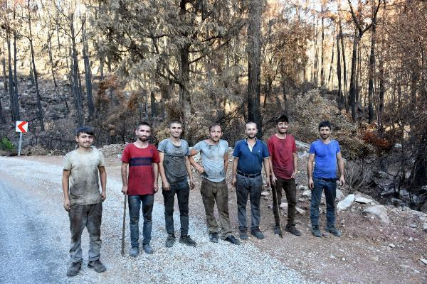 Marmaris'te bir ayda yangından zarar gören yaklaşık 500 hektar alan temizlendi-yenilendi