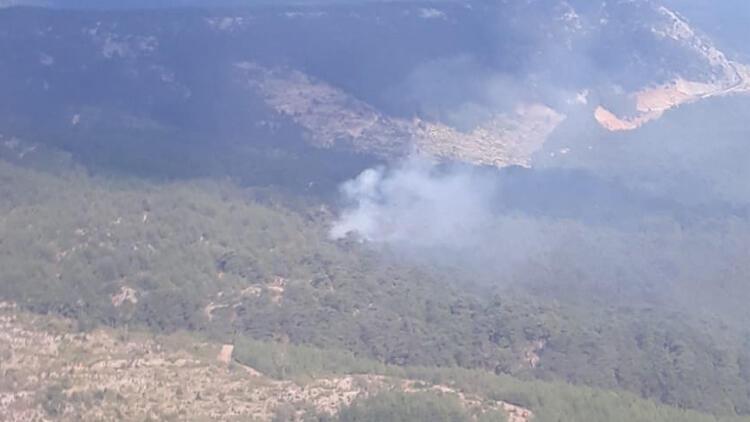 Muğla'da çıkan orman yangınına müdahale başladı -1-gazete-yenigun